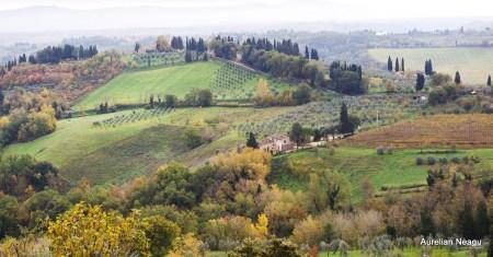 San Gimignano_8