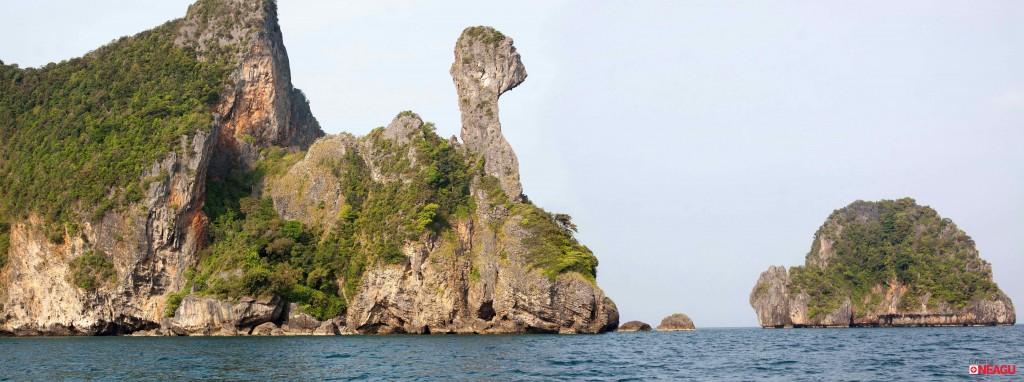 Chicken-Island