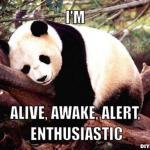 Out of hibernation…..
