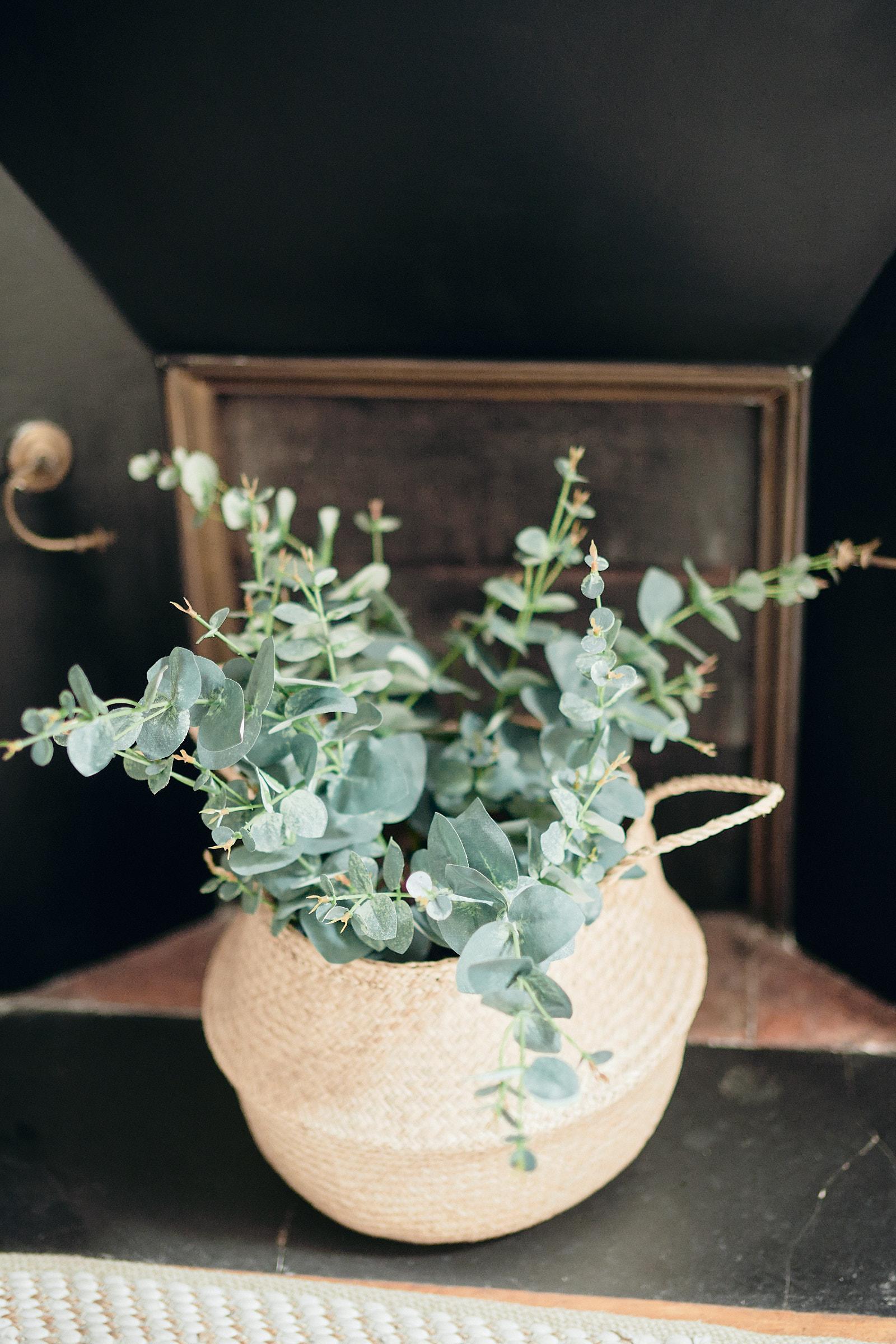 décoration florale dans l'appartement du marié à rennes