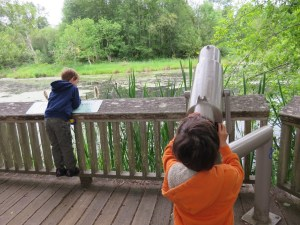 nisqually wildlife refuge hike with kids