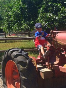 tractors at remlinger farm
