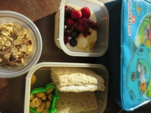 a lunch idea for kindergarten