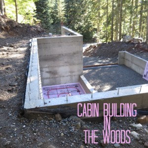 building a cabin in the woods near Snoqualmie Pass Washington