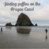 Looking for Puffins in Oregon (Our Impromptu Oregon trip with kids part 2!)