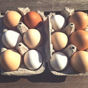 Review: farm fresh eggs in Acme Farms produce box