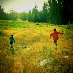 seattle hikes with kids