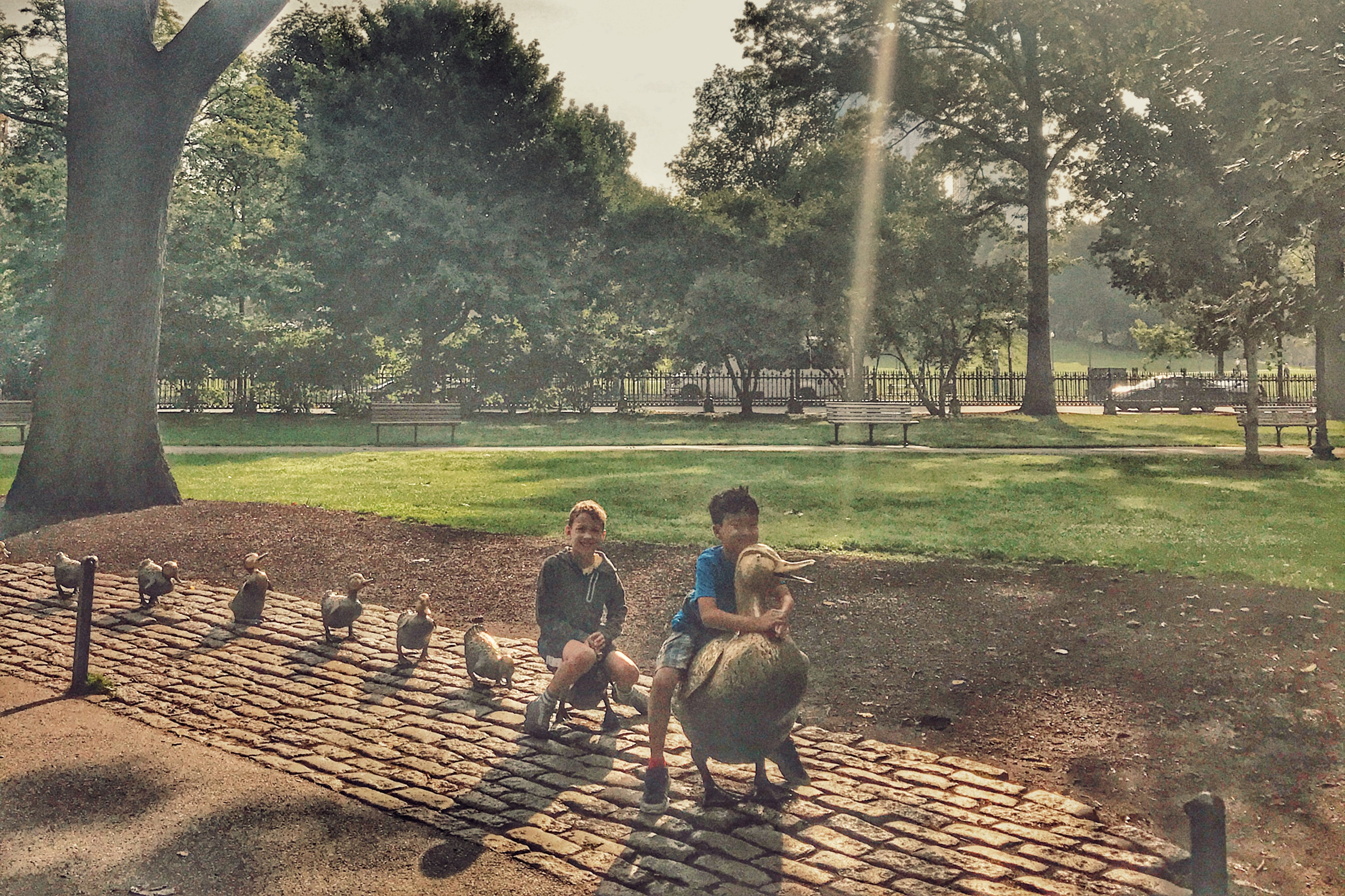 Make way for duckling in Boston with kids