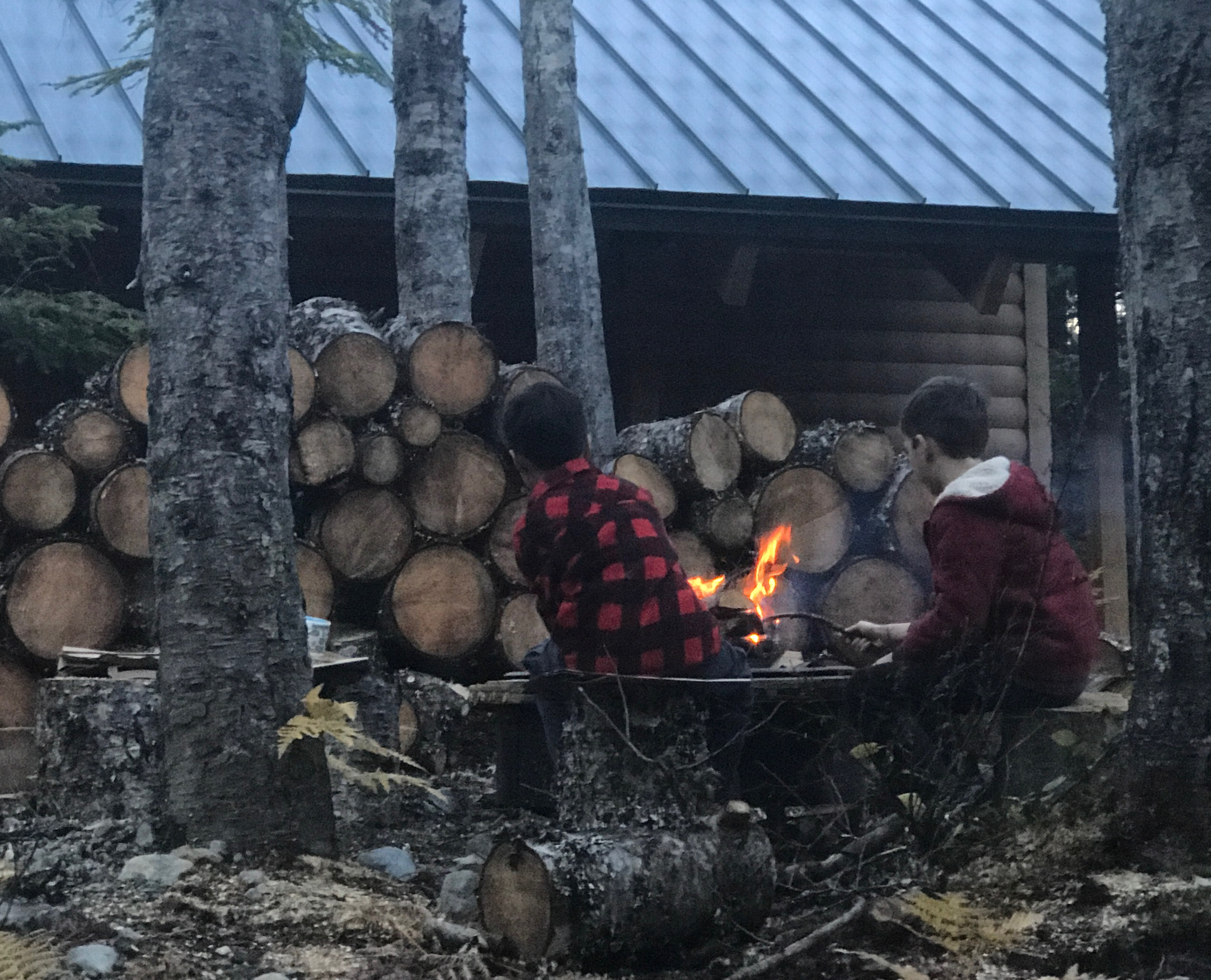 Cabin life in the mountain with kids