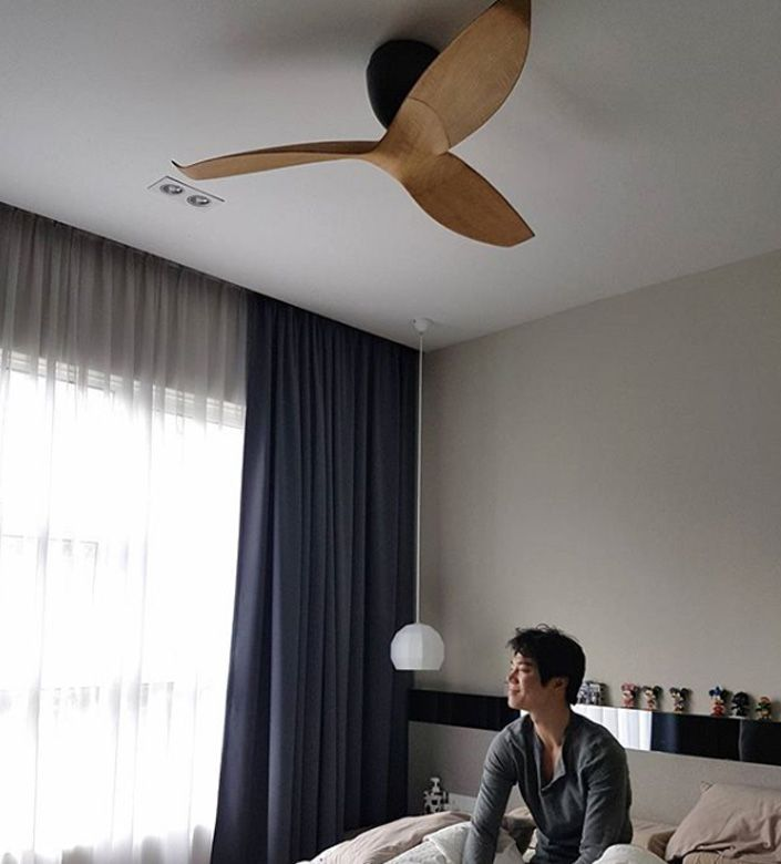 Ventilador de techo de diseño
