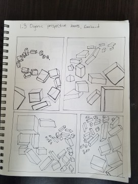 organic-perspective-boxes-2