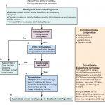 Physiologic foundations of cardiopulmonary resuscitation