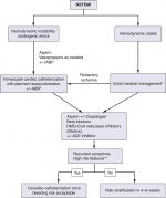 Prevention of Ischemic Injury in Noncardiac Surgery