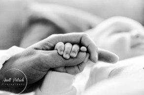newborn-foto-zinnowitz-fotograf