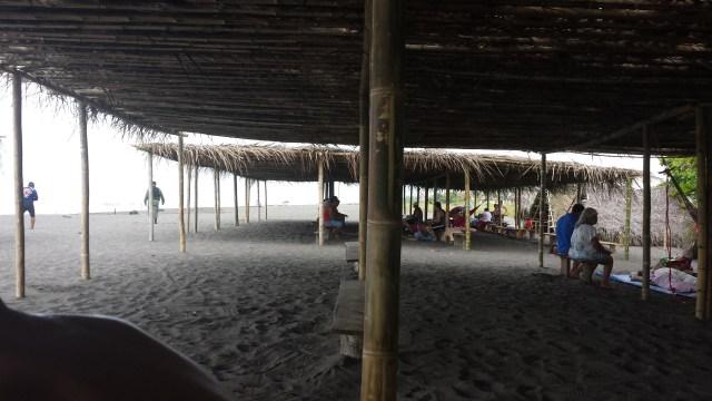 Overdaekning pa strand