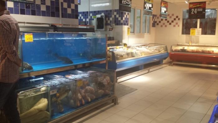 Akvarie i supermarked