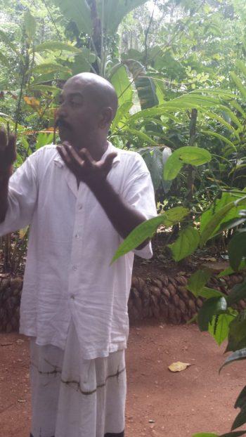 Spice garden mand