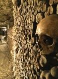 Originally the bones were piled five feet high and 80 feet deep.
