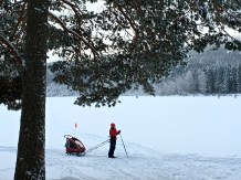 This skier stops to take a call while acting like a sled dog for his kids in the carrier behind him.