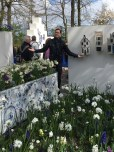 """This year, a special """"Delft Garden"""" was dedicated to the blue-and-white ceramics that have made the city of Delft so famous. The Keukenhof has been hosting a variety of inspirational gardens for the public since 1949, when the first group of 20 growers came up with the idea of an annual flower festival in the park."""