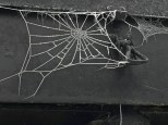 Check out this frost-encrusted spiderweb. It looks like a piece of Hadeland art glass.