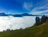 Taa-da, we pass through the clouds and into the sunlight. The distant peaks of the Uri Alps poke their heads out above the cloud layers. Mt. Rigi belongs to the Schwyzer Alps, one of many mountain ranges that make up the North-Eastern Swiss Alps.