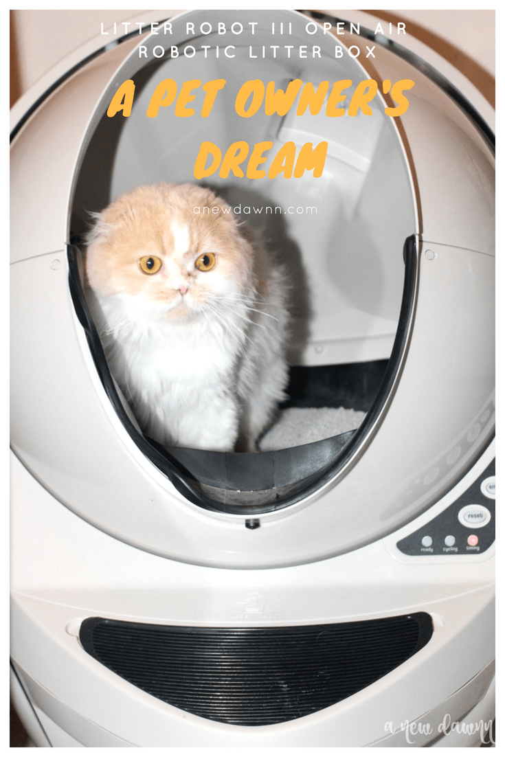 Cat using Litter Robot
