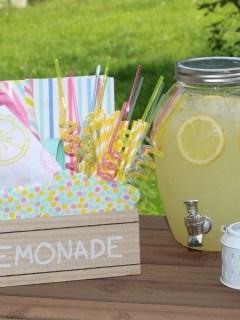 DIY Lemonade Stand Kit