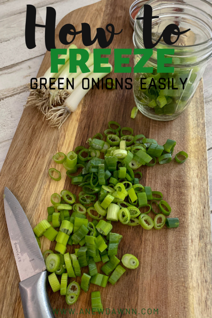 Learn how to freeze and regrow green onions to use all year long! It's easier than you think!