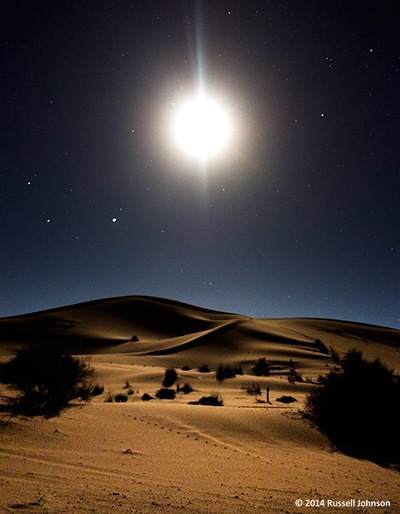 Moonlight in the Sahara
