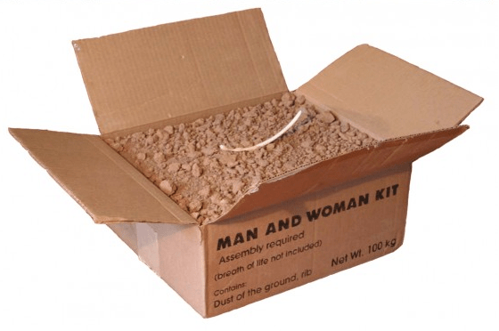 Man and Woman Kit - is it evolution or creationism?