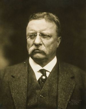 theodore Roosevelt democratic debate