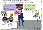 illegal voters