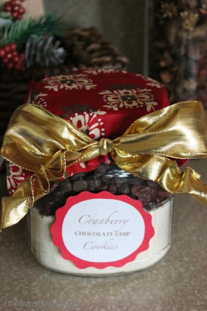 Cranberry chocolate chip cookie mason jar gift