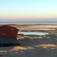 Beach Camping | Abu Dhabi
