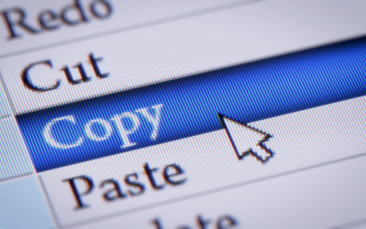 reasons to avoid copying professional resume