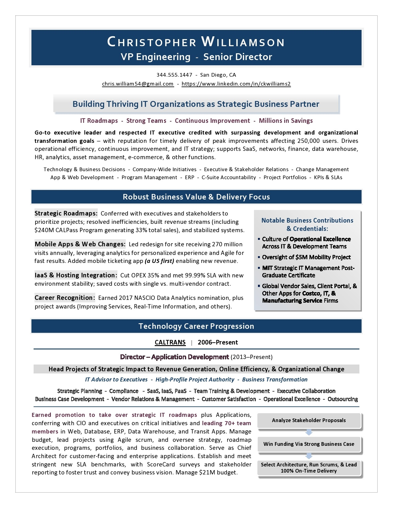 Cmo Resume Executive Resume Samples From Top Us Award Winning