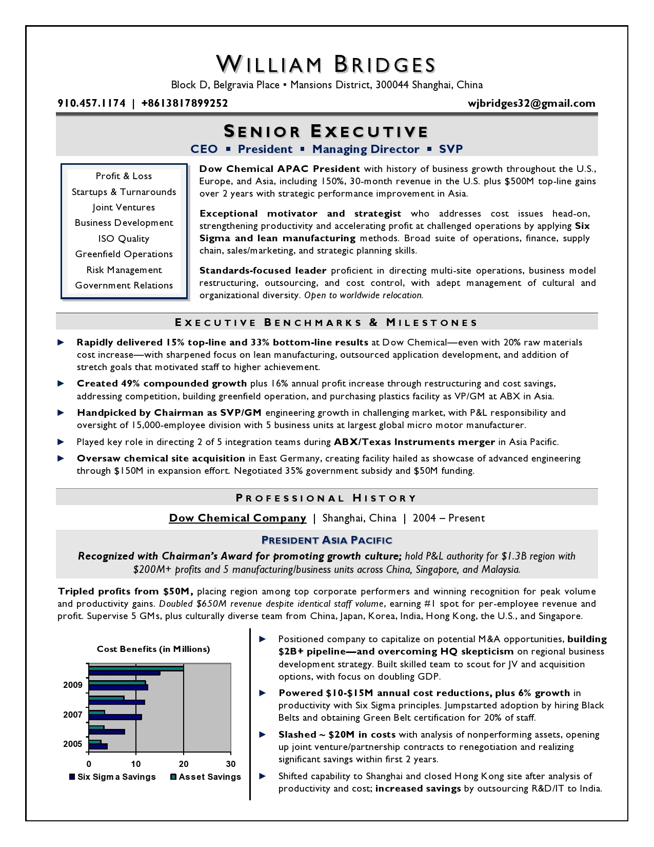 Ceo Resume Template Ceo Sample Resume Award Winning Resume Writer Serving Chicago