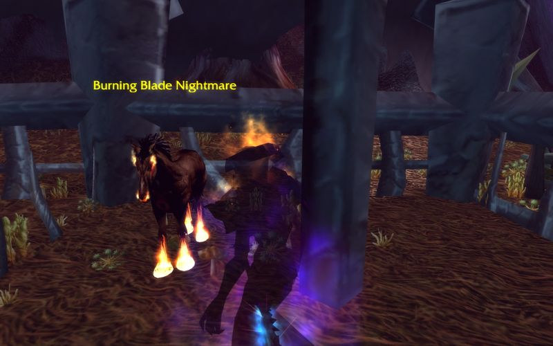 shadow priest wants a Burning Blade pony, Desolace