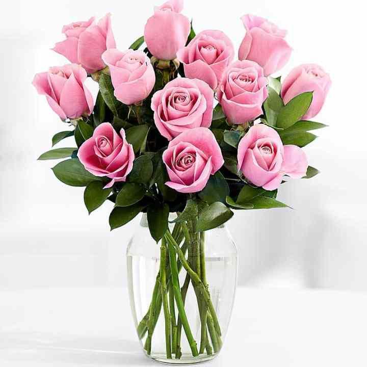 Букет 11 Длинных Розовых Роз