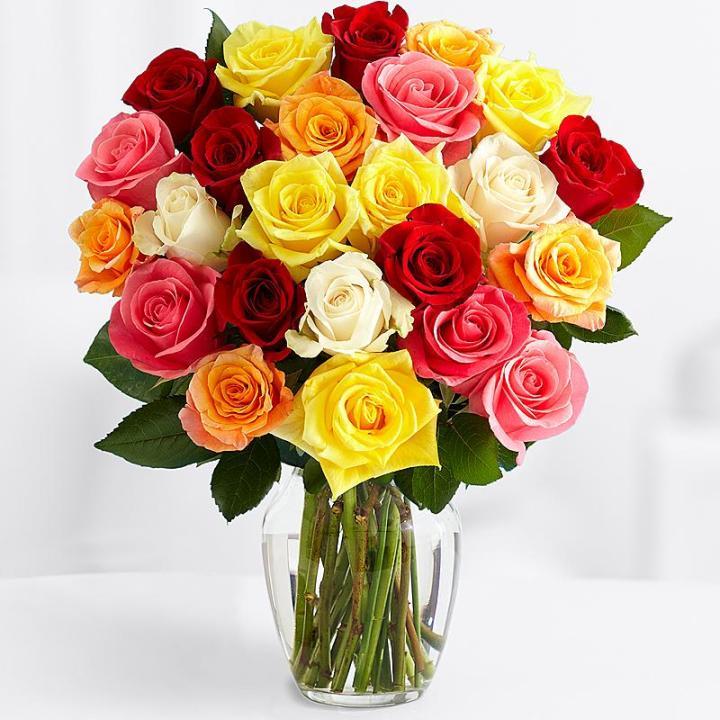 25 Красочных Роз