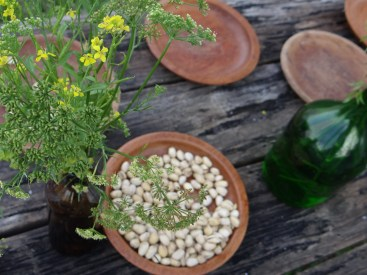 Flores de salsa e de mostarda na decoração ®SKLindemann