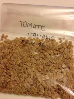 Sementes de tomates orgânicos comprados na Feira. Foram separas e secas e, agora, embaladas. Quando esquentar, serão plantadas. ®SKLindemann