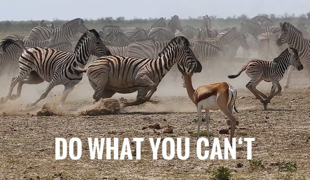 Do what you can´t