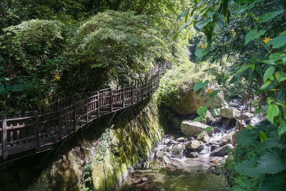 尖石景點 老鷹溪瀑布森林步道輕鬆好走可戲水消暑 - 遇見天使~Angela