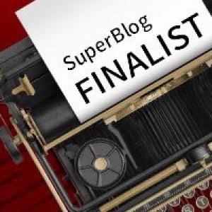Concluzii SuperBlog 2017