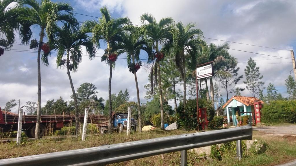 Viñales- Cuba