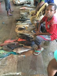 Boy at Fish Market