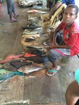 Boy at Fish Market