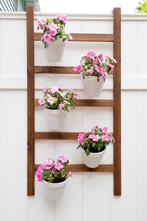 DIY Wall Planter Ladder